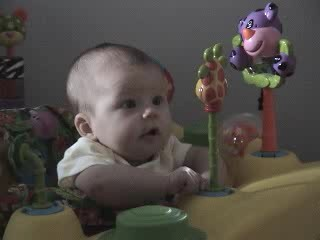 Mara Exersaucer Giraffe Video